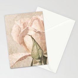 Vintage Pale Pink Rose Stationery Cards