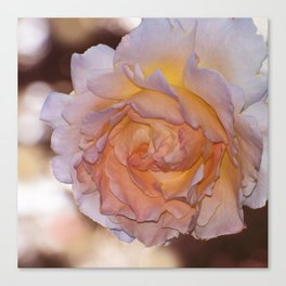 O'Keeffe Rose Canvas Print