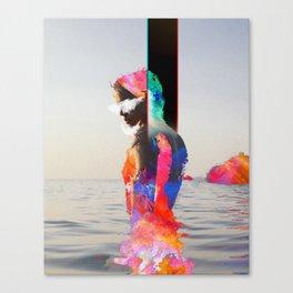 Seean Canvas Print
