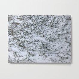 Snowy Grass Metal Print