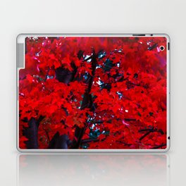 Red Maple leaves Laptop & iPad Skin