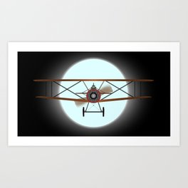 Flying by Night Art Print