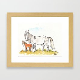 Mare and foal Framed Art Print