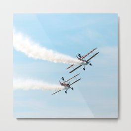 Wing Walkers Metal Print
