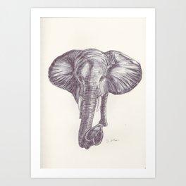 BALLPEN ELEPHANT 12 Art Print