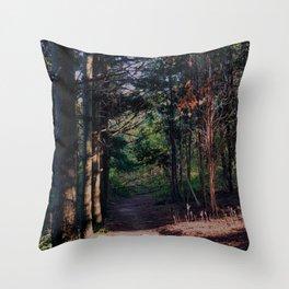 2 Creeks' Trail Throw Pillow