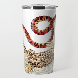 Spectacled Caiman and a False Coral Snake by Maria Sibylla Merian c.1705-10 // Wild Animals Decor Travel Mug