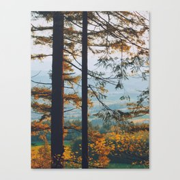 Earthscape Landscape Photography Tall Autumn Fall Trees Overlooking Fields Canvas Print