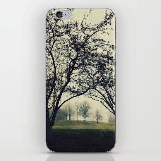 Embracing the Distance iPhone & iPod Skin