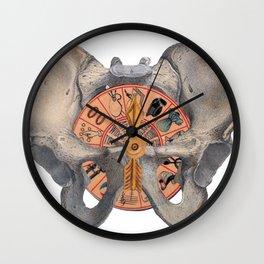 Pelvic Spin Wall Clock