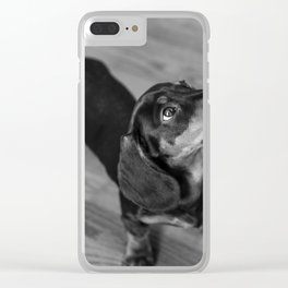Weenie dog closeup (black and white) Clear iPhone Case