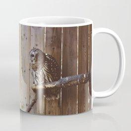 Curious Owl (Montreal, Canada) Coffee Mug