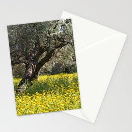 The Old Olive Grove in Ozankoy Stationery Cards