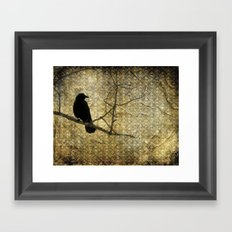 Crow Of Damask Framed Art Print