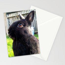 Neherland Dwarf in Spring Garden Stationery Cards