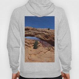Mesa Arch Hoody
