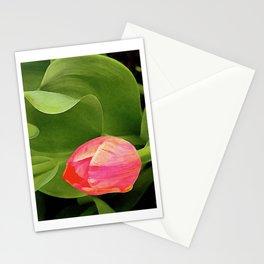 Joyful Tulip Stationery Cards