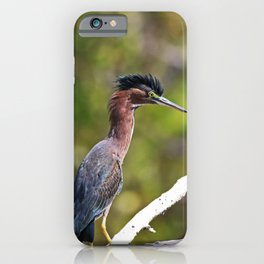 He's a Stranger iPhone Case
