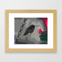 Stylized Hummingbird Framed Art Print