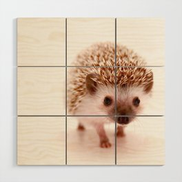 Hedgehog Wood Wall Art