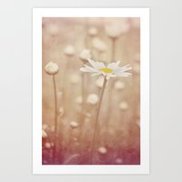 daisies Art Prints featuring Daisies by KunstFabrik_StaticMovement Manu Jobst