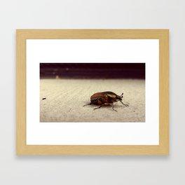 Chillin. Framed Art Print