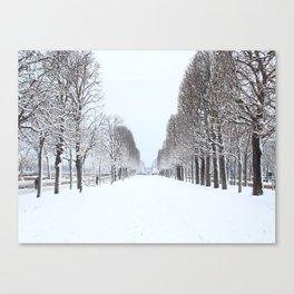 Tree avenue,Paris Canvas Print