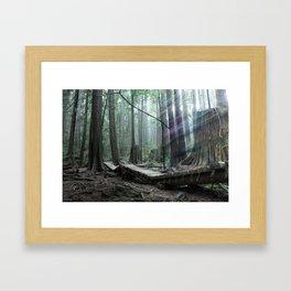 North Shore Spirit Framed Art Print