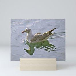 Seagulls Swim Mini Art Print