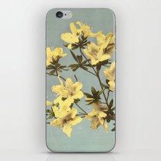 BOTANICAL STILL LIFE - AZALEA iPhone & iPod Skin