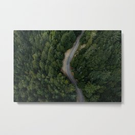 NATURE - PHOTOGRAPHY - FOREST - HIGHWAY - ROAD - TRIP - TREES Metal Print