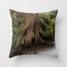 Paradise Creek II Throw Pillow