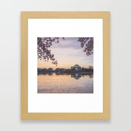 The Jefferson Memorial Framed By Cherry Blossoms Framed Art Print