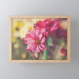 Pink Daisy Dancer Fine Art Floral Photography Framed Mini Art Print