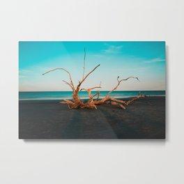 Jekyll Island, USA #society6 #decor #buyart Metal Print