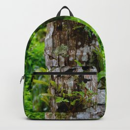 Plants on Trunk Backpack