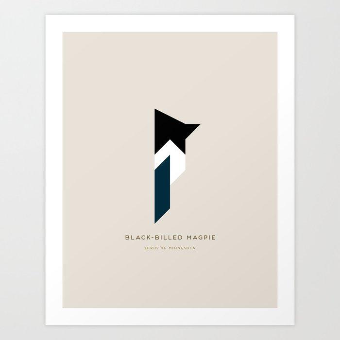 Black-Billed Magpie Art Print