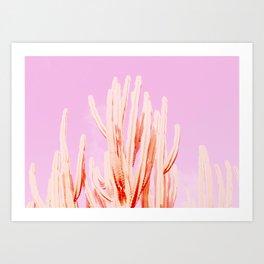 Looking Pink Art Print