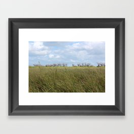 A grass land Framed Art Print