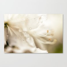 invite {white} Canvas Print