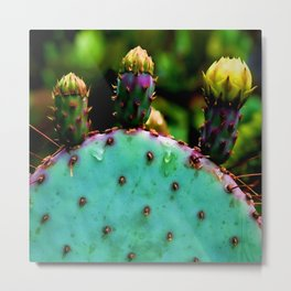 Cactus In The Garden Metal Print