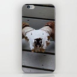 Big Horn Sheep Skull iPhone Skin