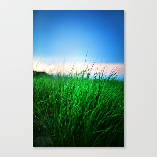 The first state Canvas Print