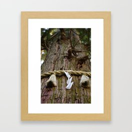Ancient Cedar Framed Art Print