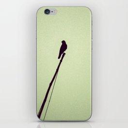 Lonely Bird iPhone Skin