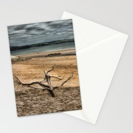 Driftwood 3 Stationery Cards