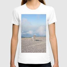 rhine valley T-shirt