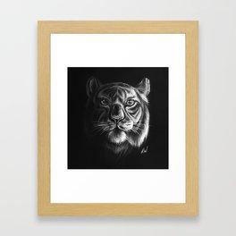 """White Tiger"" Drawing Framed Art Print"