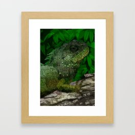 Chinese Water Dragon Framed Art Print