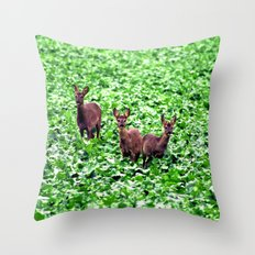 deers in the field. Throw Pillow